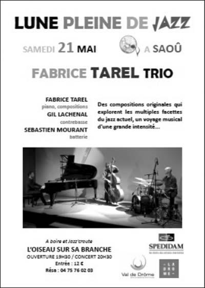 Saoû_Lune_Pleine_de_Jazz_2016_05_21-Fabrice-Tarel-Trio
